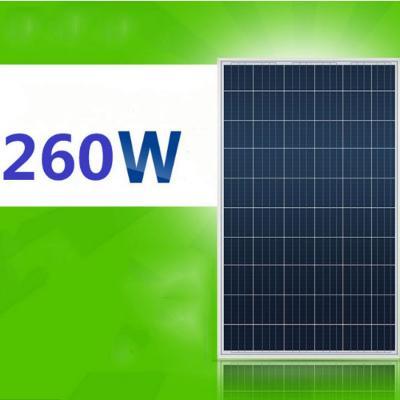 Tấm pin năng lượng mặt trời Poly 260W